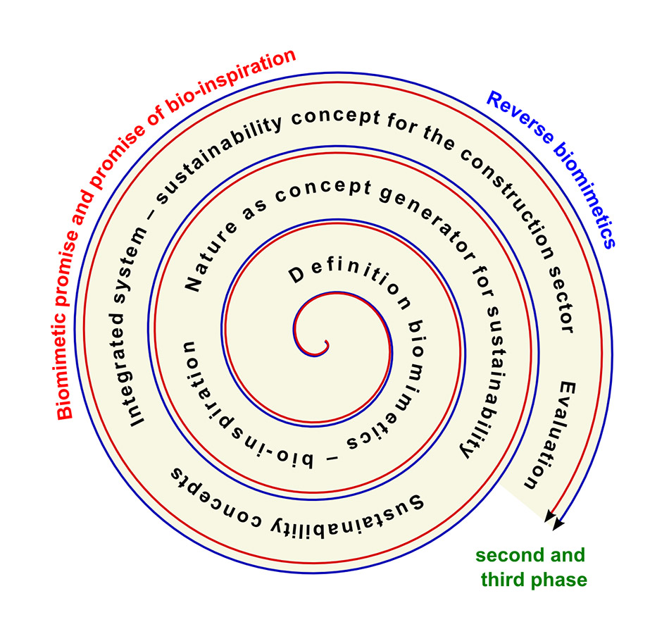 Knowledge spiral showing the increasing insights in the course of the project. Source: Plant Biomechanics Group Freiburg